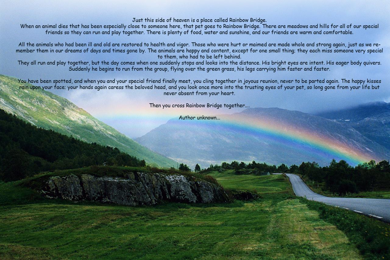 Rainbow over Norwegian Countryside